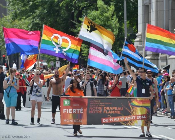 De gauche à droite, les drapeaux : fierté bisexuelle, fierté lesbienne, ours, fierté trans, cuir, LGBTQ.