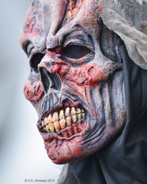 Marche_zombies_2014_14
